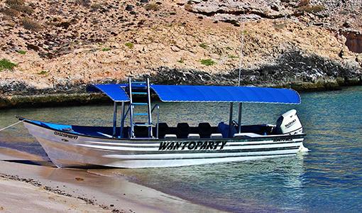 510x300 Wantoparty beach mod